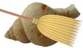 Muschelschrubber